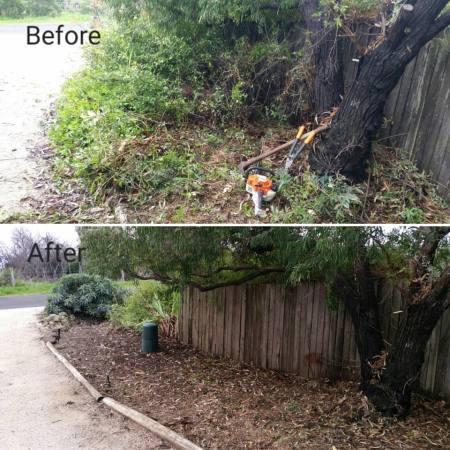 Scrub clearing by Surfscape Garden Care